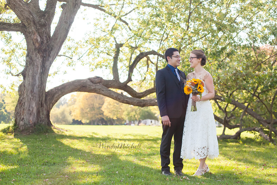 Bride and Groom under tree at Knox Farm   Buffalo Wedding Photography   Wendy Mitchell Photography